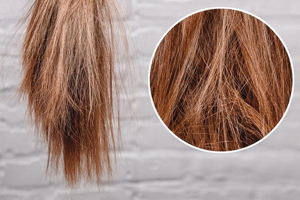 صافی و ترمیم مو با پروتئین